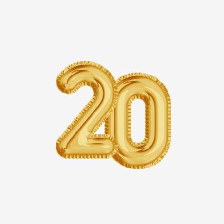 20 gadi CV Online